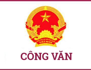 Công văn số 454/TCGDNN-KĐCL V/v hướng dẫn đánh giá tiêu chuẩn KĐCL chương trình đào tạo trình độ sơ cấp, trung cấp và cao đẳng